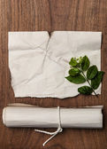 Ancient blank scroll crumpled paper texture with green leaf may use for background — Foto Stock