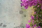 Grunge 花背景 — 图库照片