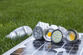 Various LED lamps on photovoltaic cells and CFL in the grass — Stock Photo