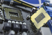 Processor on the motherboard with socket prepared for installati — Foto Stock