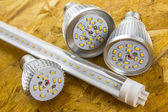 T8 LED tube and various chilled E27 bulbs — Stock Photo