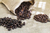 Three samples pure Arabica coffee beans of various origins — Stock Photo