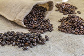 Four samples pure Arabica coffee beans of various origins — Stock Photo