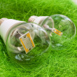 Two LED bulb E27 with different chips in large transparent glass — Stock Photo #48892371