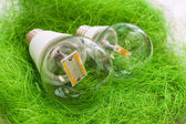 Two LED bulb E27 with different chips in large transparent glass — Stock Photo