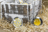 GU10 LED bulbs on straw in front of old  box — Stock Photo