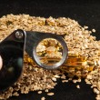 Gold in coins, nuggets and ingots — Stock Photo