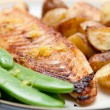 Grilled tilapia fish fillets - Stock Photo