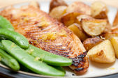 Grilled tilapia fish fillets — Stock Photo