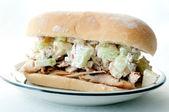 华尔道夫的启发鸡肉沙拉三明治 — 图库照片