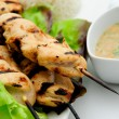 Grilled chicken on bamboo skewers with a peanut dipping sauce — Stockfoto