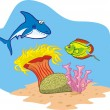 Stock Vector: Shark, fish and coral reef