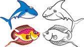 Tropical fish 2 — Stock Vector