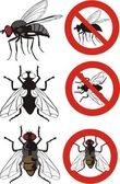 Housefly - warning signs — Stock Vector