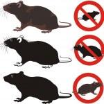 Rat, rodent - warning signs — Stock Vector #25100117