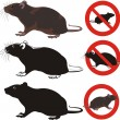 Stock Vector: Rat, rodent - warning signs