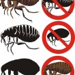Royalty-Free Stock Vector Image: Flea - warning signs