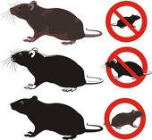 Rat, rodent - warning signs — Stock Vector