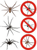 Spider - warning signs — Stock Vector