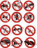 Common household pest icon — Stock Vector