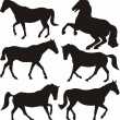 Horses - silhouettes — Stock Vector