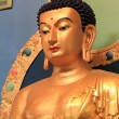Buddha Statue — Stock Photo #22050809