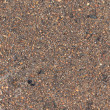 Royalty-Free Stock Photo: Texture of asphalt