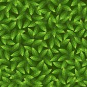 Green leaves pattern. Seamless vector. — Stock Vector