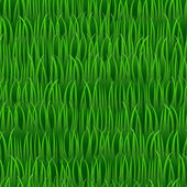 Grass seamless vector background — Stock Vector