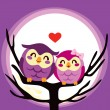 Owl Love Couple — Stock Vector