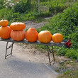 Royalty-Free Stock Photo: Roadside trade in pumpkins