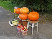 Roadside trade in agricultural products — Stock Photo