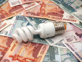 The small bulb saves big money — Stock Photo