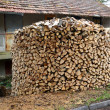 Round woodpile of birch firewood — Stock Photo