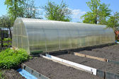 The greenhouse from cellular polycarbonate on a country section — Stock Photo