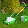 Lawn-mower with the container for a grass — Stock Photo