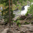 Kivach Falls. Karelia, Russia — Stock Photo #25977545