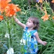 The little girl looks at garden lilies — Foto de Stock