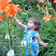 The little girl looks at garden lilies — Stock Photo