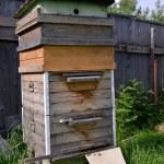 Big wooden beehive — Stock Photo