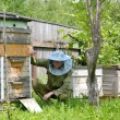 The young beekeeper sits about a beehive — Stock Photo