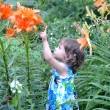 The little girl points a finger at garden lilies — Stock Photo