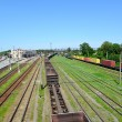 Stock Photo: Kazatin, Ukraine. Cargo compositions at railway station