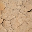 The dried cracked earth, background — Stock Photo