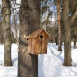 Nesting box on a tree in winter park — Stock Photo