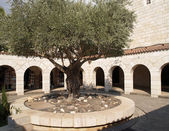 Israel. Internal court yard of Church of Multiplication of Bread — Stock Photo