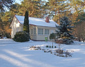 Winter. Cottage in the pine wood — Stock Photo