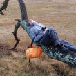 The young man has a rest, lying on a tree — Stock Photo