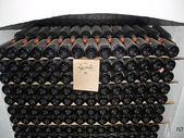 Collection of vintage wine in wine-making combine — Stock Photo
