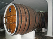 Wine casks in a cellar of wine-making combine — Stock Photo
